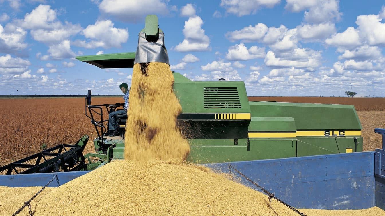 Agriculteur récolte des céréales