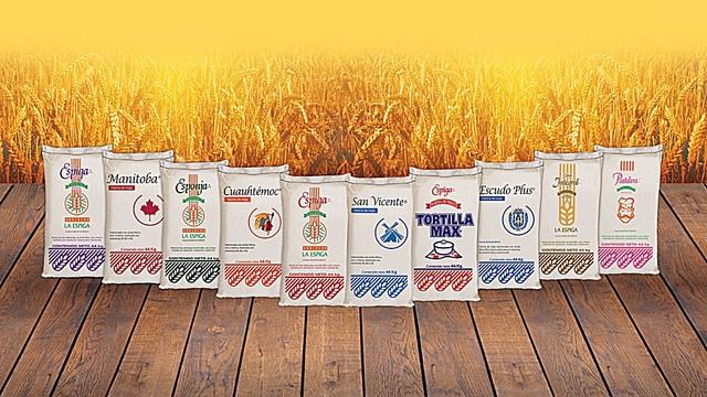 Harinas de trigo de Bunge México.